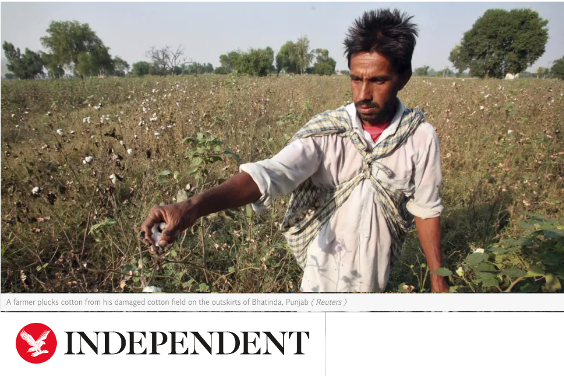 Independent news headline with person in field farming
