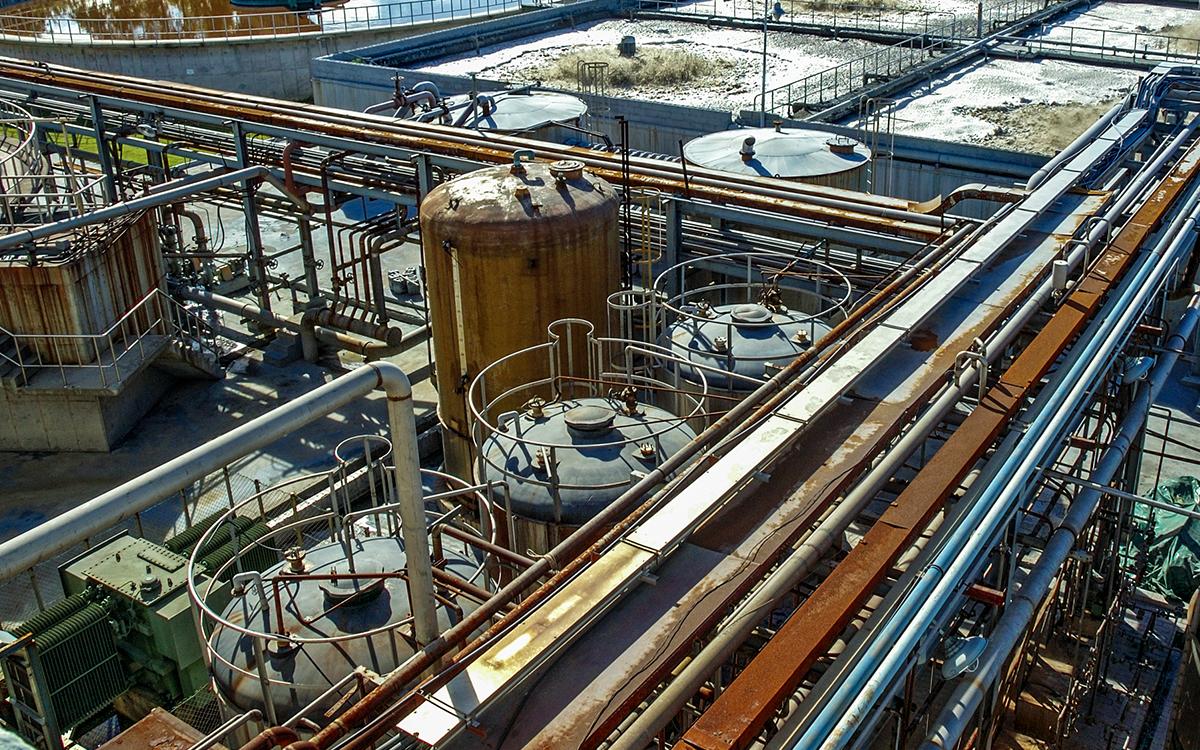 Bioaugmentation of Animal Waste Processor